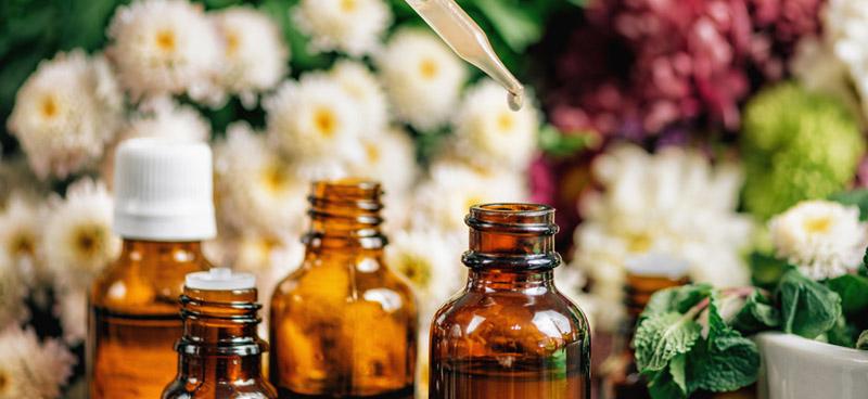 Florais de Bach e seus benefícios para saúde